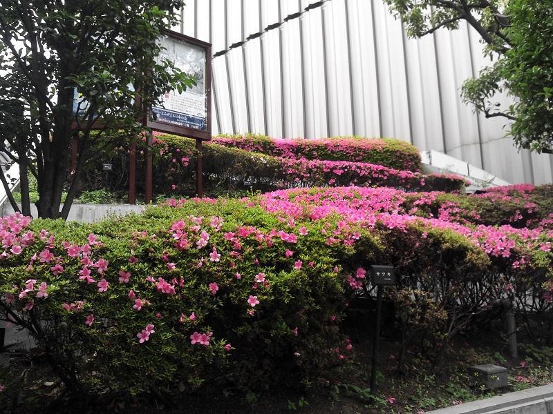 9NCM_0284_昭和館